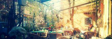 Dinerbon Den Haag Eetcafé De Klap